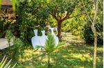 Immagine di Vivaio Forestale